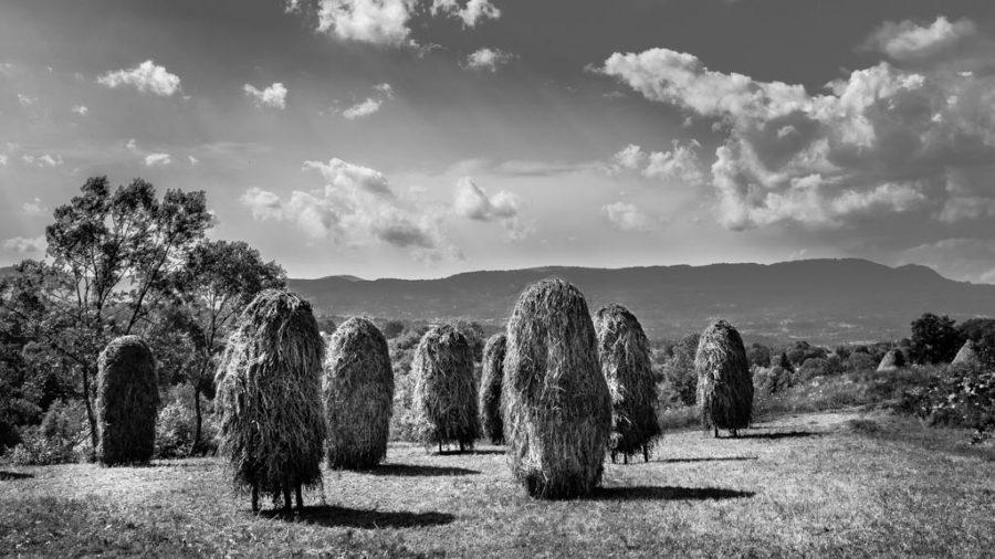 photo en noir et blanc des bottes de foin dans le Maramures, Roumanie
