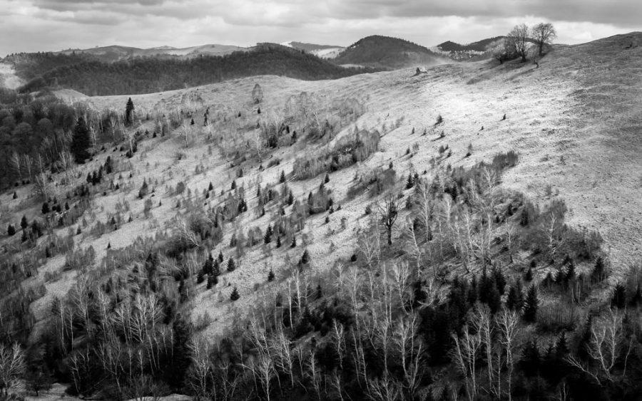 photo noir et blanc paysage de montagne roumanie